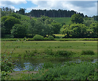 SK0120 : View across the Trent Valley to Cannock Chase by Mat Fascione