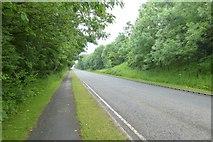 NZ2387 : Road to Ashington by DS Pugh