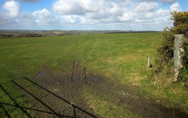 Field on Tremollet Down