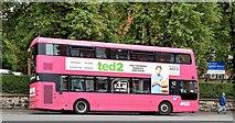 J3272 : Metro bus, Lisburn Road, Belfast (July 2015) by Albert Bridge