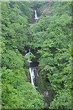 SN7477 : Mynach Falls, Devil's Bridge by Philip Halling