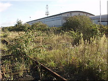 TQ2182 : Derelict railway siding on Old Oak Common by Mick Crawley