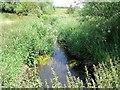 SK3127 : Old Trent Water by Ian Calderwood