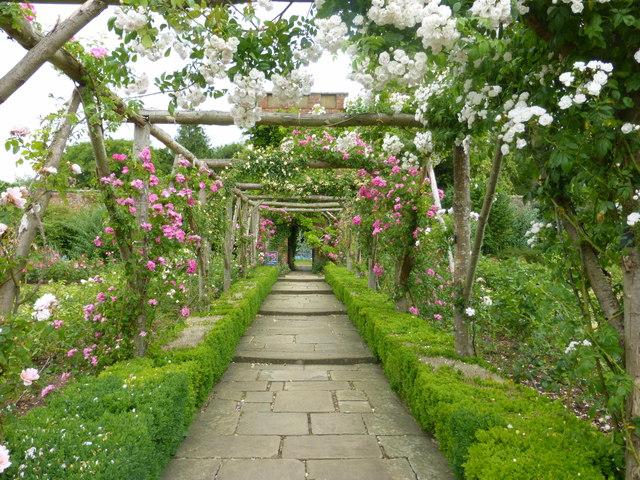 Rose garden, Polesden Lacey