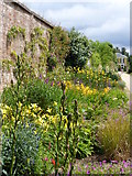 TQ1352 : Herbaceous border, Polesden Lacey by pam fray