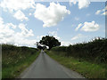 TF8326 : Narrow road towards Rudham Grange by Adrian S Pye