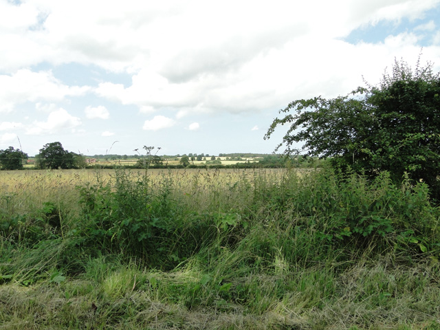 View across the valley at East Rudham
