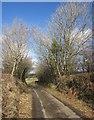 SX3775 : Lane near Downhouse by Derek Harper