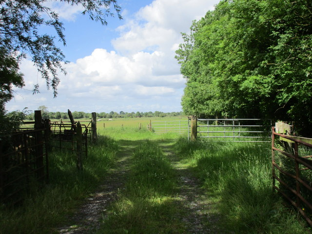 Field entrance near Cashel
