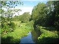 TQ0387 : River Misbourne: Upstream of Denham by Nigel Cox