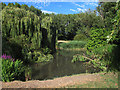 TQ3677 : Folkestone gardens: pond in midsummer by Stephen Craven