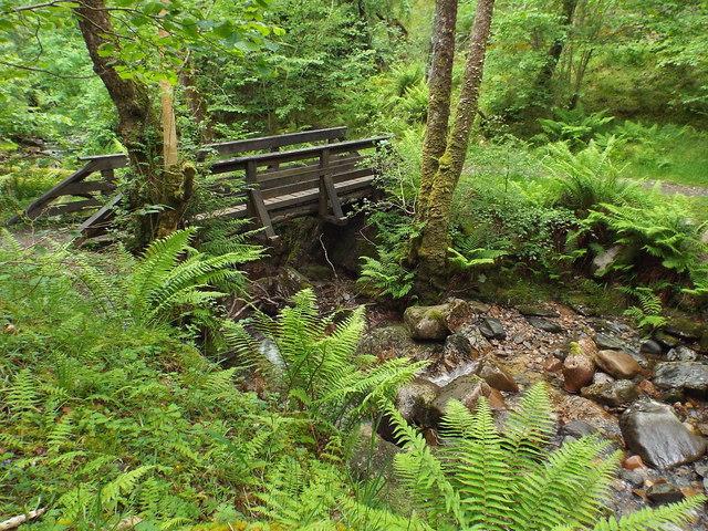 Bridge over a woodland stream near Kinlochmore