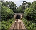 SJ9077 : Prestbury Tunnel by Peter McDermott