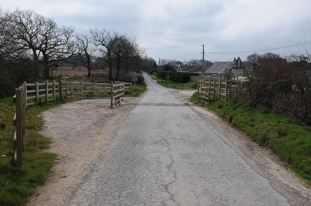 Cattle grid at Thornworthy