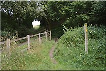 SJ7758 : Public footpath from Salt Line to Hassall Green by Jonathan Hutchins