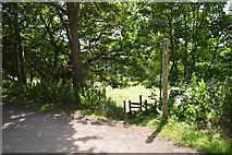 SJ7758 : Public footpath from Salt Line to Day Green by Jonathan Hutchins