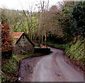 SO5306 : Passing place on the main road through Whitebrook by Jaggery