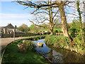 SX3574 : Venterdon Pond by Des Blenkinsopp