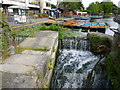 TL4458 : Weir on The River Cam by Richard Humphrey