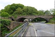 NZ7805 : The railway bridge over the Esk at Beggar's Bridge by David Smith