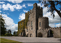 S1051 : Castles of Munster: Killough, Tipperary (2) by Mike Searle