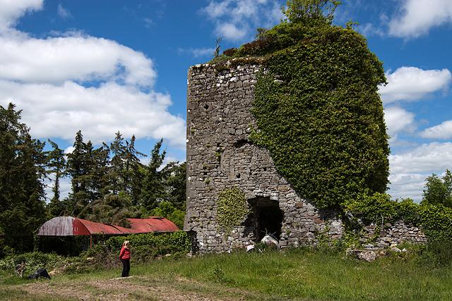 Castles of Munster: Lismallin, Tipperary