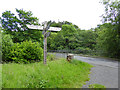 NY6392 : Signpost at Butteryhaugh Bridge by Oliver Dixon