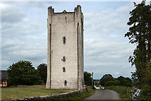 R9639 : Castles of Munster: Grantstown, Tipperary (1) by Mike Searle
