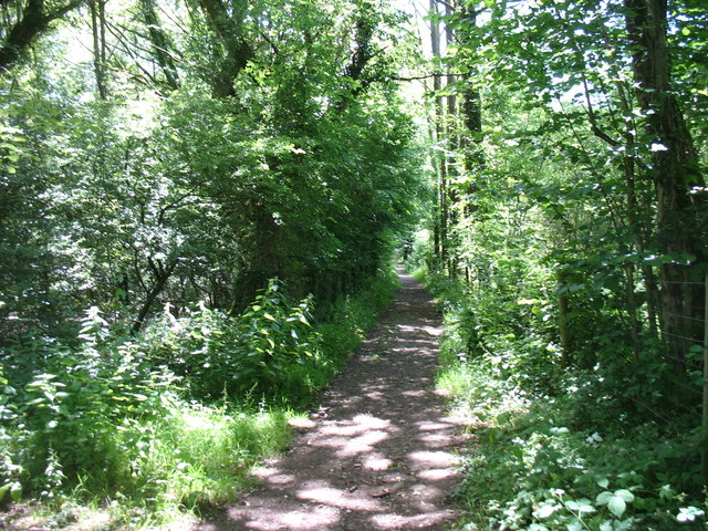The Wye Valley Walk south of Narth