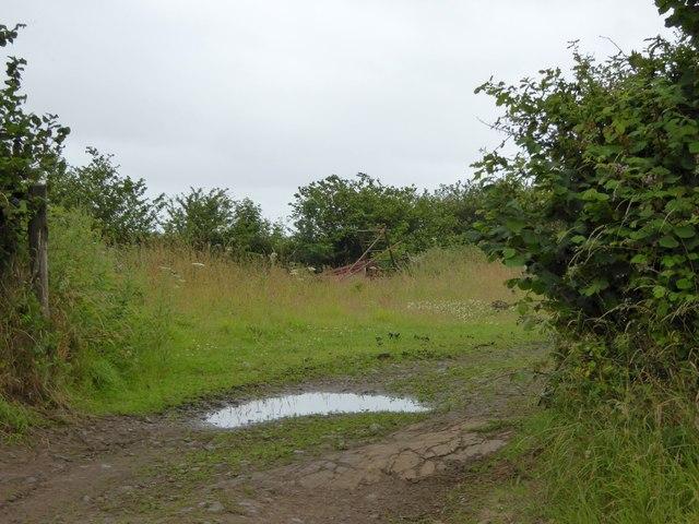 Entrance to a field near Whitsley Cross