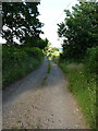 SJ4600 : Track through Longnor Park towards Park Farm by Richard Law