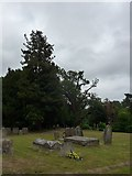 SU7963 : St James, Finchampstead: churchyard (2) by Basher Eyre