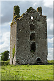 S0429 : Castles of Munster: Knockgraffon, Tipperary - revisited (1) by Mike Searle