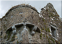 S0429 : Castles of Munster: Knockgraffon, Tipperary - revisited (4) by Mike Searle