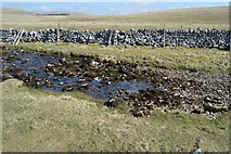 SD8965 : Water Sink, Malham Water by N Chadwick