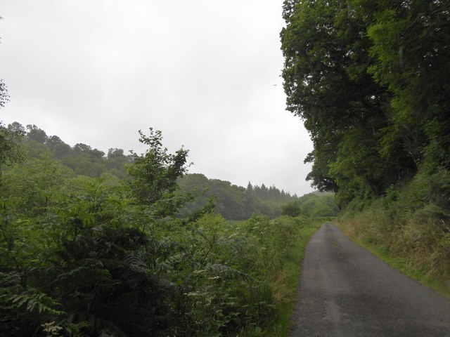 Minor road by the Woolleigh Brook