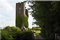 R4372 : Castles of Munster: Ballymarkahan, Clare (1) by Mike Searle