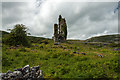 M3201 : Castles of Munster: Cappagh, Clare (1) by Mike Searle