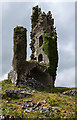 M3201 : Castles of Munster: Cappagh, Clare (3) by Mike Searle