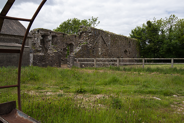 Castles of Leinster: Rathumney, Wexford (2)