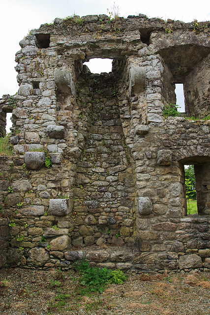 Castles of Leinster: Rathumney, Wexford (4)