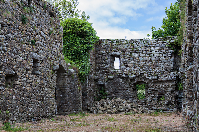 Castles of Leinster: Rathumney, Wexford (5)