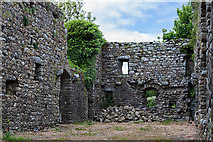 S7616 : Castles of Leinster: Rathumney, Wexford (5) by Mike Searle