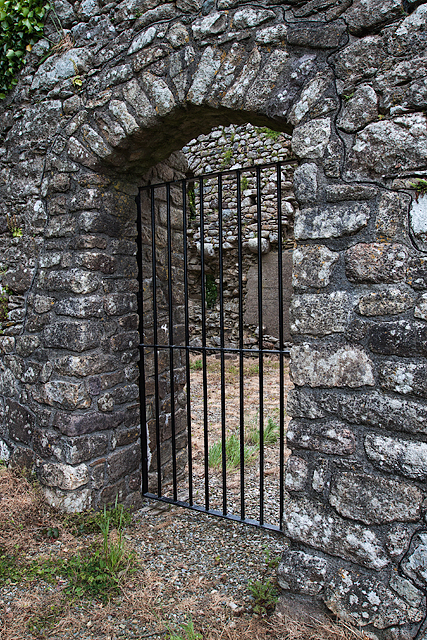 Castles of Leinster: Rathumney, Wexford (6)