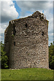 S7235 : Castles of Leinster: Coolhill, Kilkenny (2) by Mike Searle