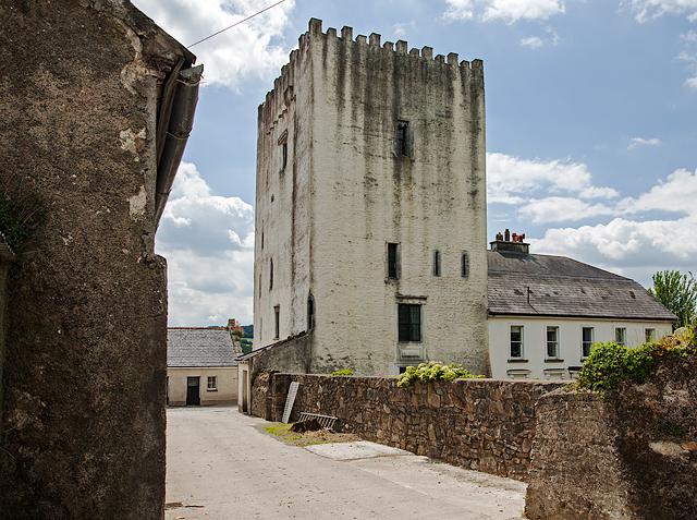 Castles of Leinster: Tibberaghny, Kilkenny (3)
