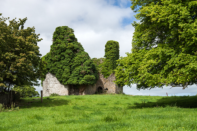 Ballintemple House, Ballintemple, Offaly (1)