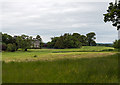 S0180 : Loughton House, Moneygall, Offaly (1) by Mike Searle