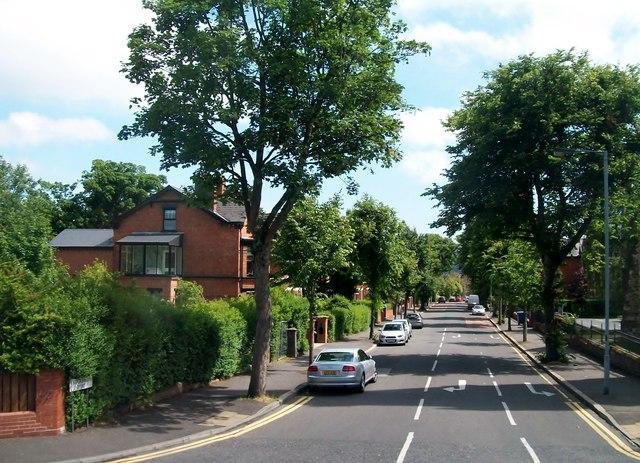 Leafy suburbs - Knockbreda Road, South Belfast
