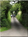 SN3608 : Walking the bicycles up a gradient, St Ishmael by Jaggery